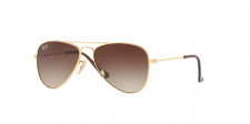 Ray Ban Junior RJ9506S 223/13